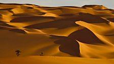 Libya's Sand Sea