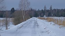 View towards the Taiga along the ice roads of Sweden