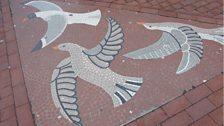 SFX: Seagulls, other birds. A February Dawn.'