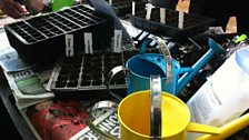 Gathering the gardening kit for Grow Your Own