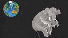 An elephant in space