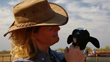 Kate Humble getting to know the sheep at Meka Station.