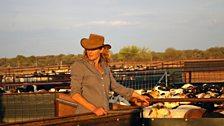 Kate Humble surveys the paddocks.