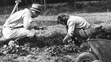 George Lloyd in the garden