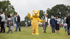 Pudsey at the fair!