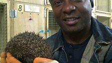David Lindo at the hedgehog rescue