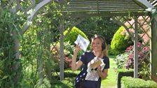 Clue three led Julie to an open garden in Blofield Heath