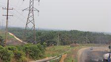 PalmoilplantationsdominatethelandscapeinRiauprovince,Sumatra.