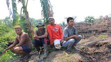 Smallholder farmers in Northern Riau