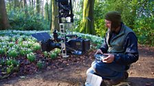 Filming snowdrops with a cable dolley system