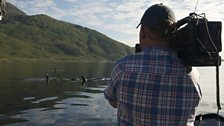 Filming Killer Whales