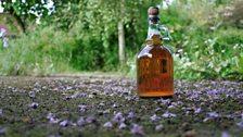 Cider. Photo: Bill Bradshaw