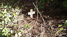 The funeral of Mr Tango Orlando
