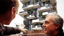The green balconies