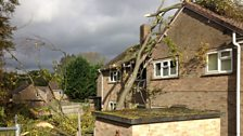 Storm damage in Bulford