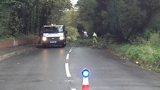 Storm damage in south Wiltshire