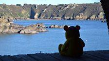Pudsey Bear enjoying the view