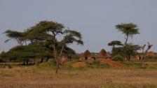 Borana village on the plains