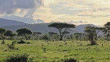 Soda Plain, Ethiopia