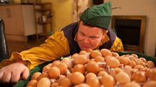 Idle Jack's eggs