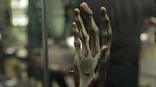 Anatomical model hand