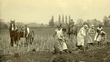 Britain experienced severe food shortages and many grand homes turned their gardens into allotments.