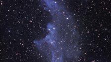 Witchhead Nebula (IC2118)