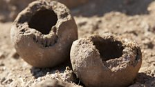 Dung balls