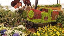 Birmingham City Council garden