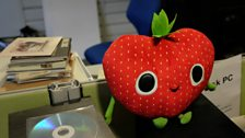 Fruit Flakey