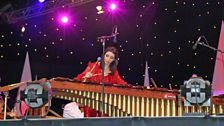 Evelyn Glennie at Proms in the Park