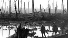 Chateau Wood, Ypres 1917