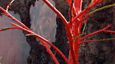 A red-painted dead tree sculpture