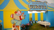 Roses at 2014 show: Circus theme