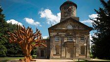 Iron Tree, Ai Weiwei, 2013