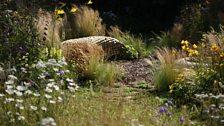 Jordans Wildlife Garden, designed by Selina Botham