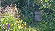 Bringing the countryside into your garden