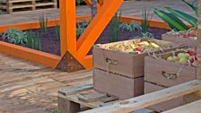 Shipping crates filled with produce