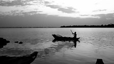 During Sri Lanka's 30-year civil war, all research into the singing fish was stopped.