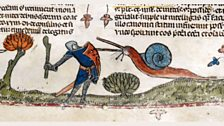 Snail attacking a knight
