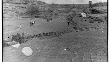 The Dogon Fields