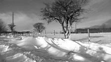 Snow at Rowley near Consett