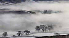 A misty morning in Rosedale