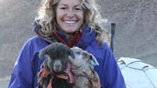Kate holds two baby cashmere goats