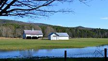 Pinehurst farm