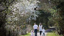 Spring day at Ashington's Queen Elizabeth Park