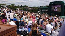 Murray Mount at Wimbledon