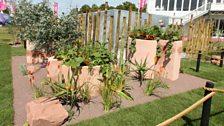 Malawi Garden. Designed by Gabrielle Evans