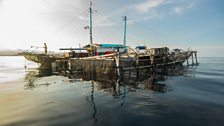 Fishermen live for months on floating platforms to exploit the rich fishing of this vast – and astonishingly deep – lagoon