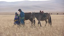 Children build a close relationship with horses on the steppe, and many train to race this small breed adapted to rough terrain